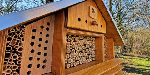 Wildbienen ziehen ein: Bauhilfe Pirmasens leistet wichtigen Beitrag zur Biodiversität